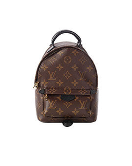 LOUIS VUITTON LV Mini Palm Springs